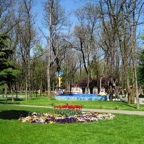 парк Чистяковская роща